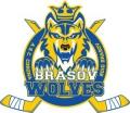 Brasov Win Romanian League