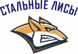 Steel Foxes Magnitogorsk logo