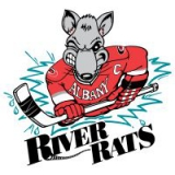 Charlotte Checkers logo