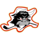 Rødovre Mighty Bulls logo