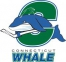 Connecticut Whale logo