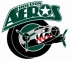 Houston Aeros logo
