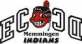 Memmingen Indians logo