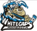 Minnesota Whitecaps logo